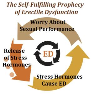 Oorzaak impotentie erectieproblemen
